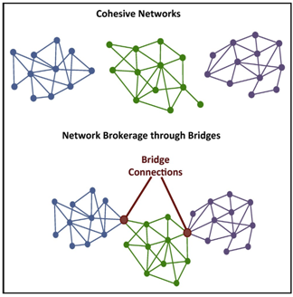 Network Structures