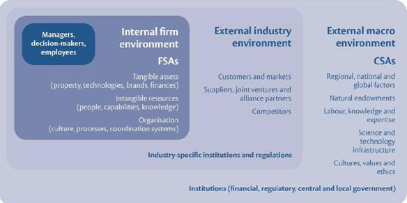 Internal firm environment