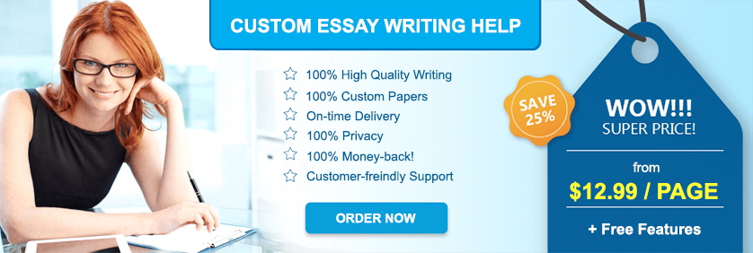 Custome Essay Writing Help Price